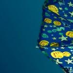 La sombrilla de cositas marinas