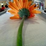 Larga flor