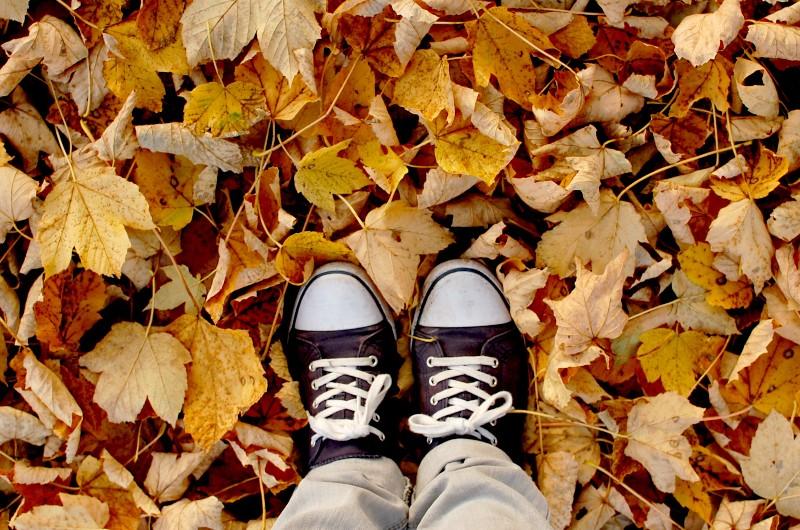 Dejando atrás el otoño