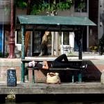 Descansando de Amsterdam