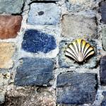 Concha de Santiago de Compostela en Bruselas