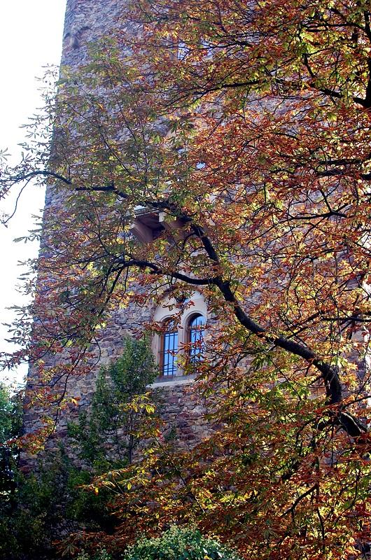 Ventana al otoño
