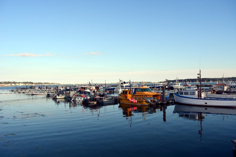 Reflejos en Poole
