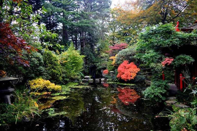 Jardín japonés, Compton Acres