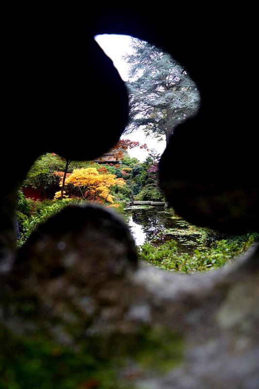 Vistas al jardín japonés